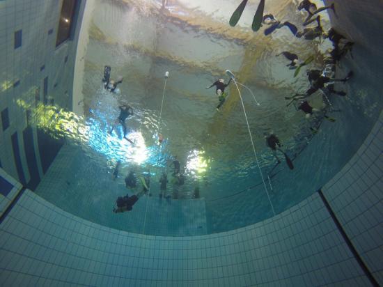 Club de plongee castlebriantais 2016